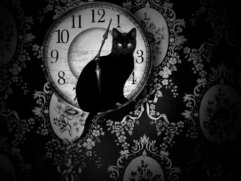 Cat Lady 2014-01-06 15-06-21-02